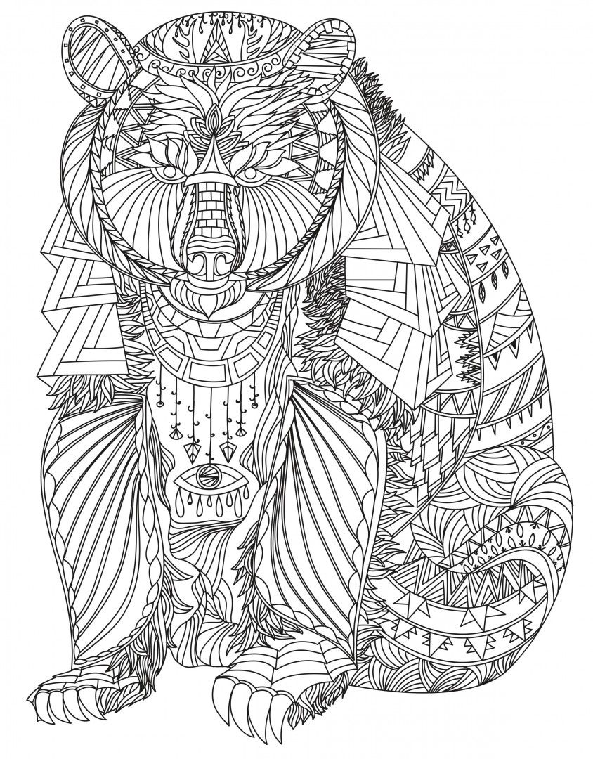 Pin by julia on Colorings Adult coloring pages Bear