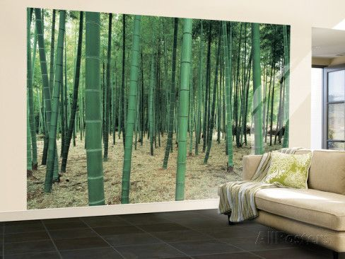 17 best ideas about Wall Mural Posters on Pinterest 3d wall
