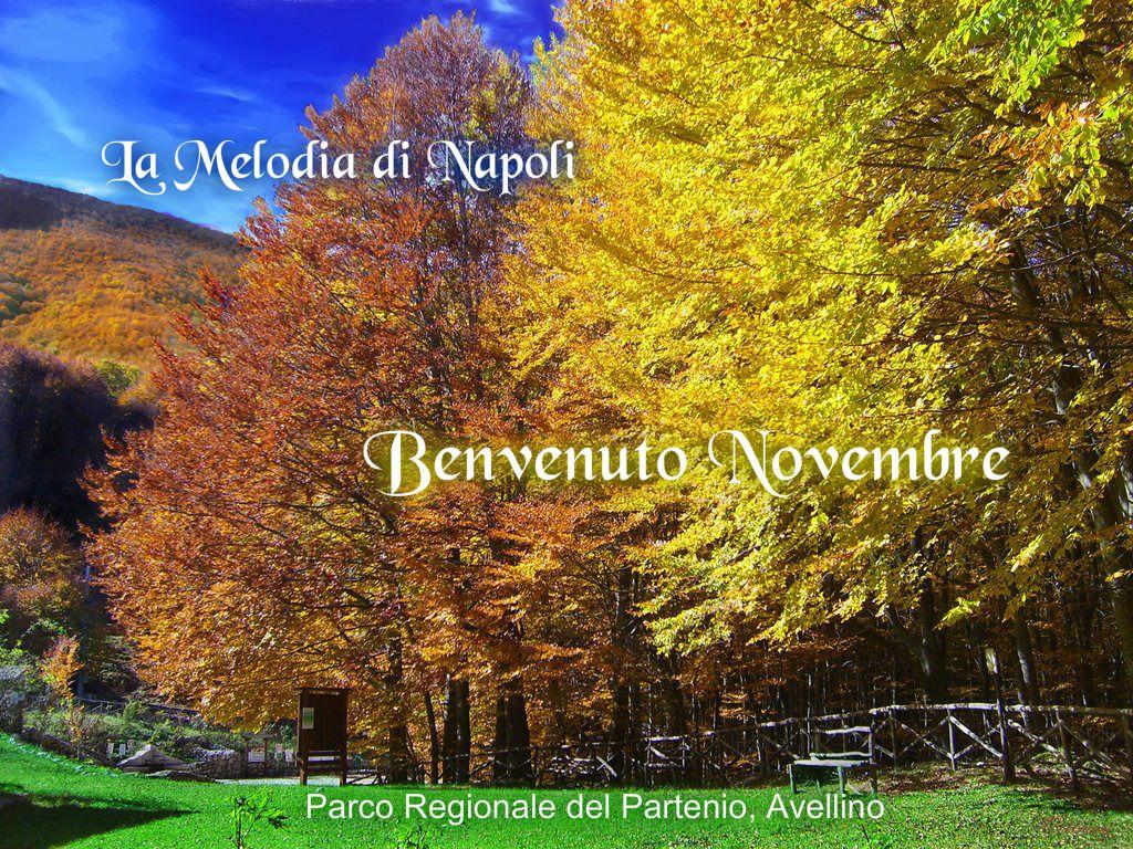Parco regionale del Partenio, Avellino - Autor. Vittorio Salatiello