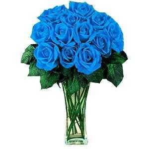 12 Blue Roses Blue Roses Wallpaper Blue Roses Blue Rose Bouquet