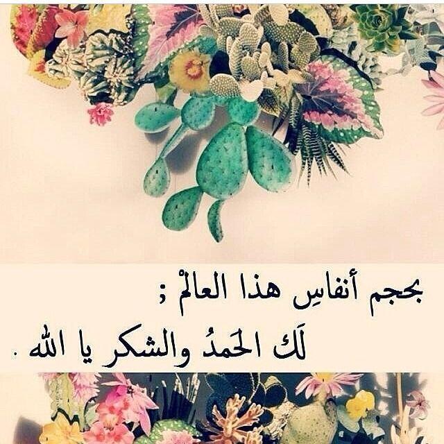 الحمد لله حمدا كثيرا طيبا مباركا يليق بجلال وجهه وعظيم سلطانه Beautiful Prayers Quran Verses Allah