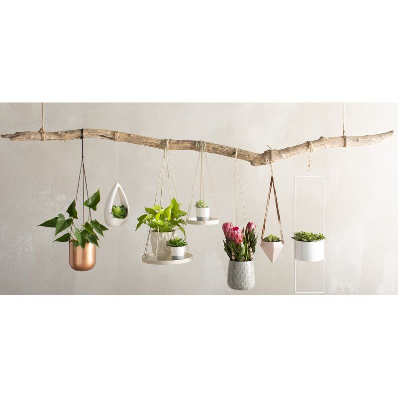 Jodie Diamond Ceramic Hanging Planter In 2021 Hanging Plants Hanging Plants Indoor Plant Decor Indoor