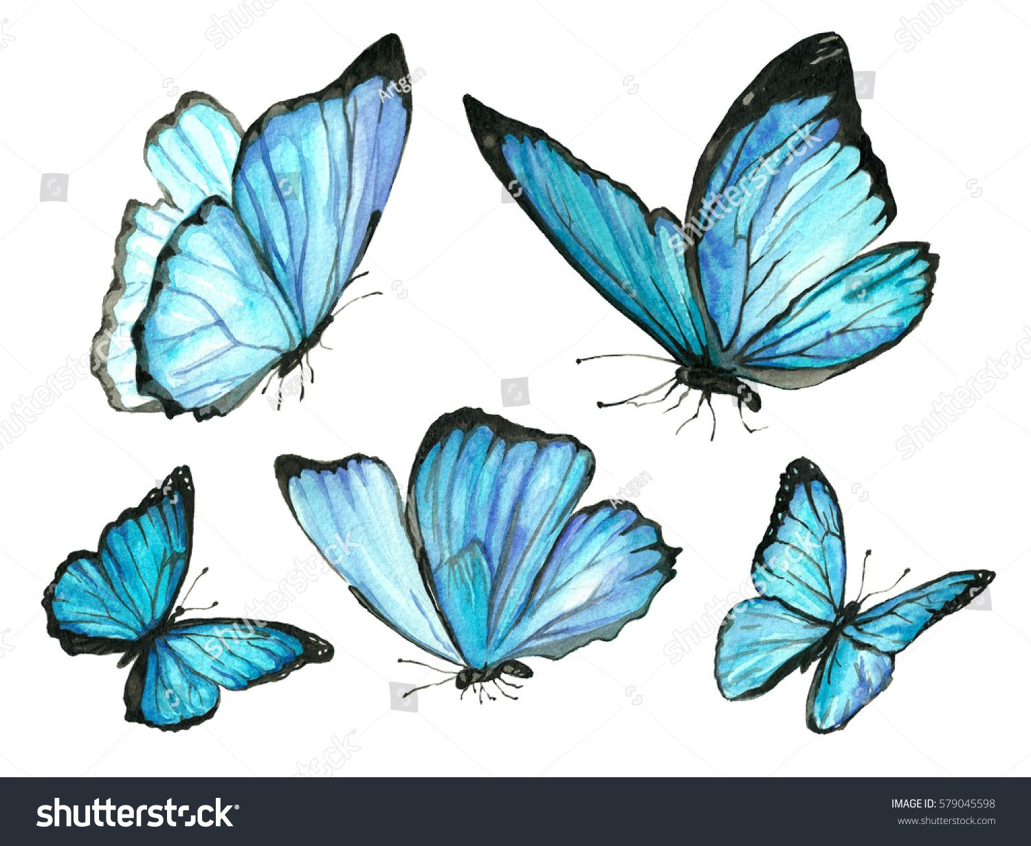 Set Blue Watercolor Butterfly Animals Wildlife Nature Stock