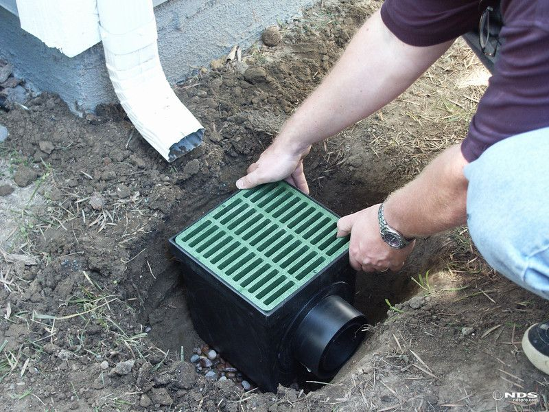 Nds Catch Basin The Single Most Effective Thing Homeowners Can Do To Minimize The Presence Of Mosquitoes Is To Eliminate Stand Gutters Downspout Yard Drainage
