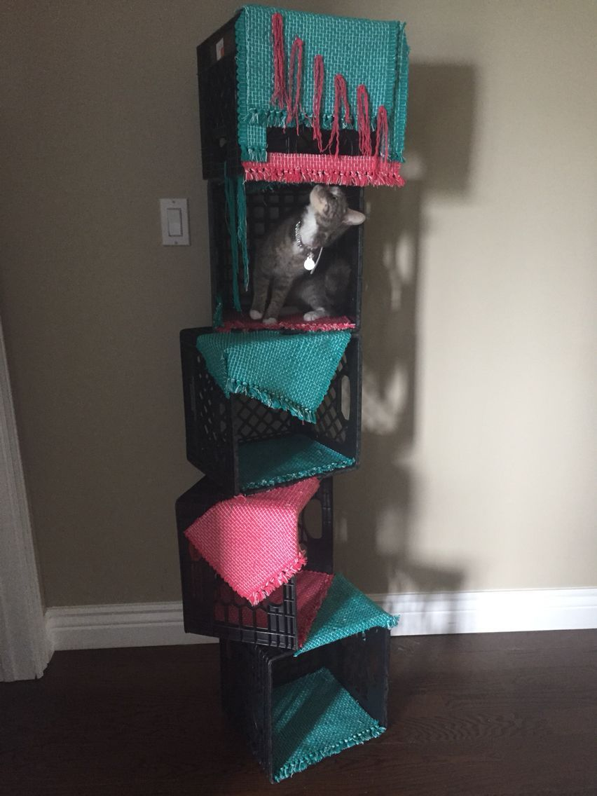 Diy Cat Tree Under 25 Place Mats Zip Ties And Milk Crates Diy Cat Tree Cat Diy Cat Tree