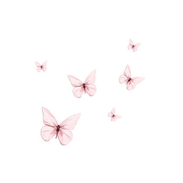 Eledhwen Fortheloveof El9 Png Butterfly Wallpaper Iphone Butterfly Wallpaper Butterfly Art