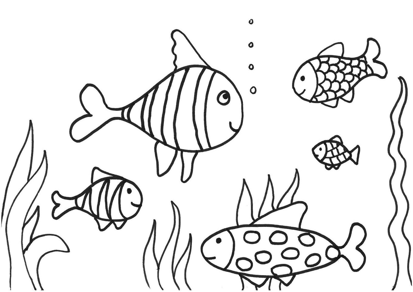 free-the-rainbow-fish-coloring-pages-imagixs | Stained glass | Pinterest