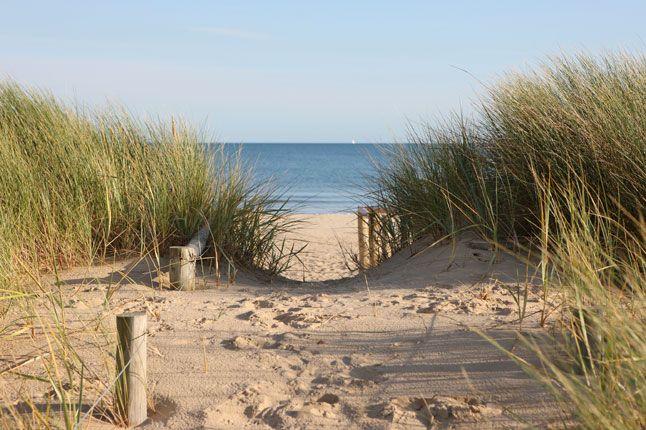 Sandbanks.