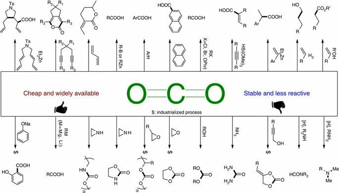Representative examples using CO2 as C1 building block in organic synthesis.