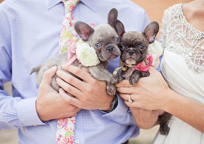 Whimsical Watercolor Wedding Inspiration Dog Wedding French