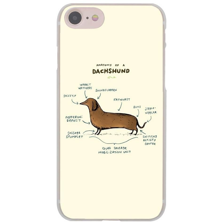 Anatomy of a Dachshund Weiner Sausage Dog Hard Transparent Case ...
