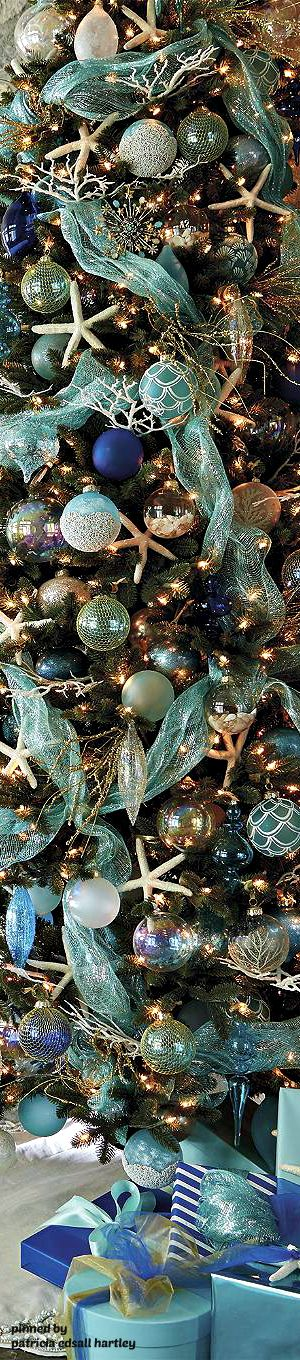 Pin By Sarah Marie On Peacocks With Images Beach Christmas