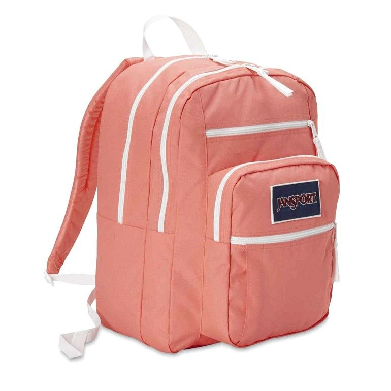 4188ecc84 Cheap Jansport Backpacks At Ross | backpack | Cheap jansport ...