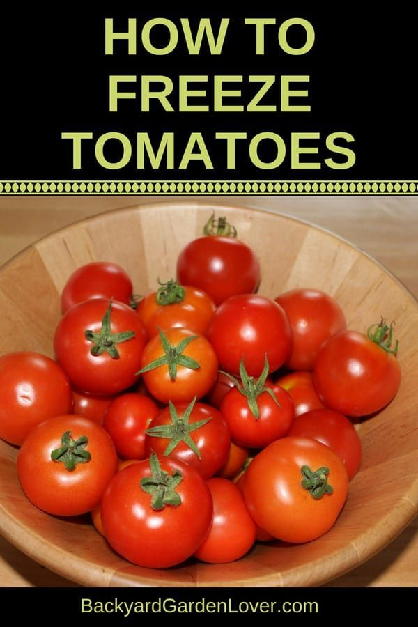 How To Freeze Tomatoes For Winter Freezing Tomatoes