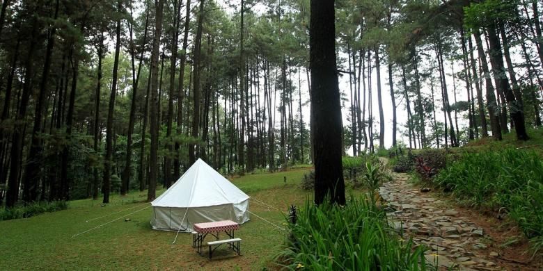 Kebun Raya Cibodas Camping