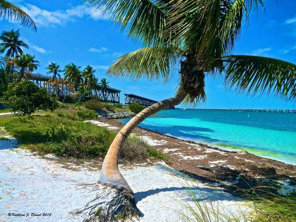 Another gem in the Florida Keys. #corona #coronaextra #theplacetobe