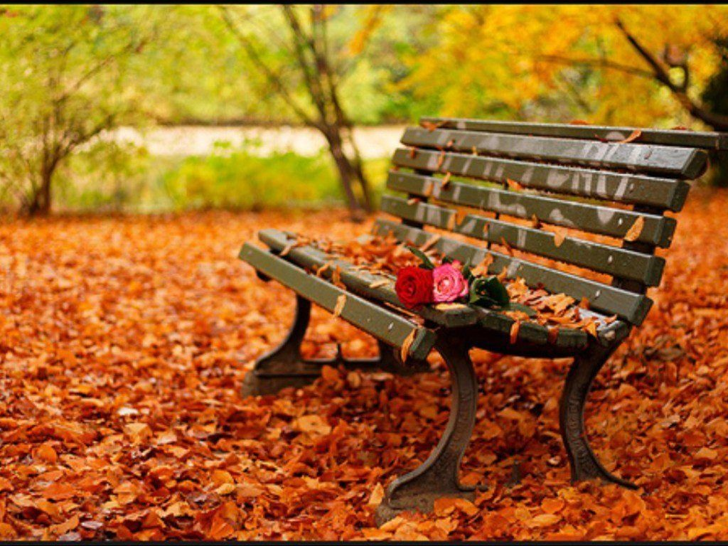 Remarkable Lovers Bench Outdoor Fall Pictures Bench Evergreenethics Interior Chair Design Evergreenethicsorg