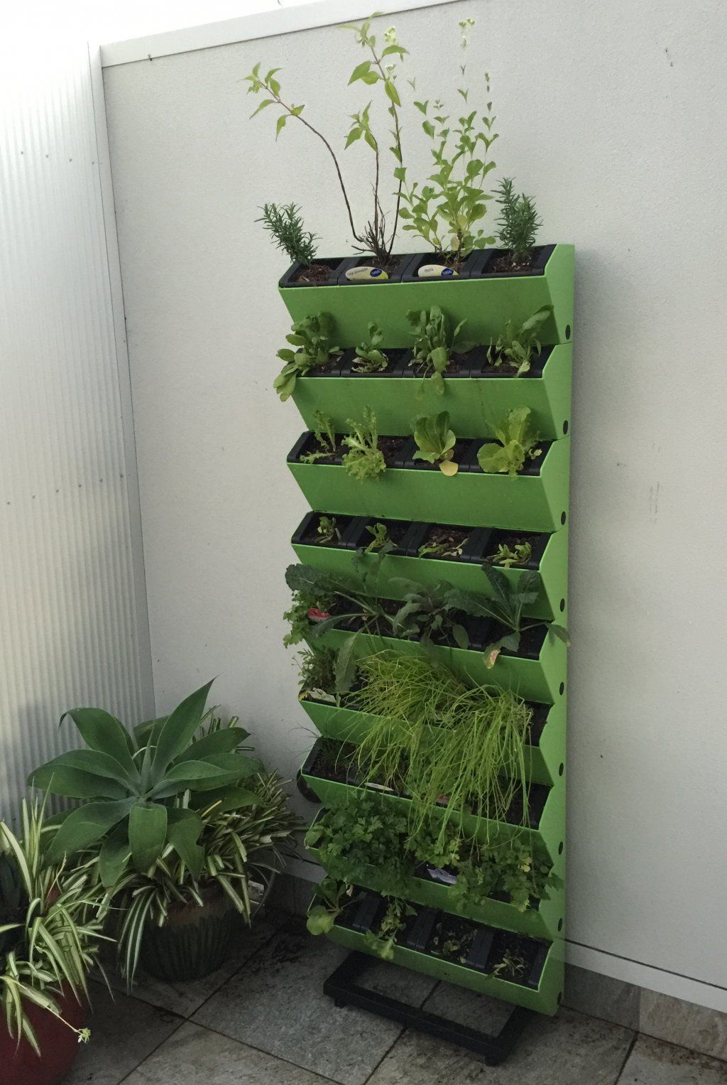 Easy Vertical Garden On Rack System For Edible Gardens Or Green Walls Great For Balconies