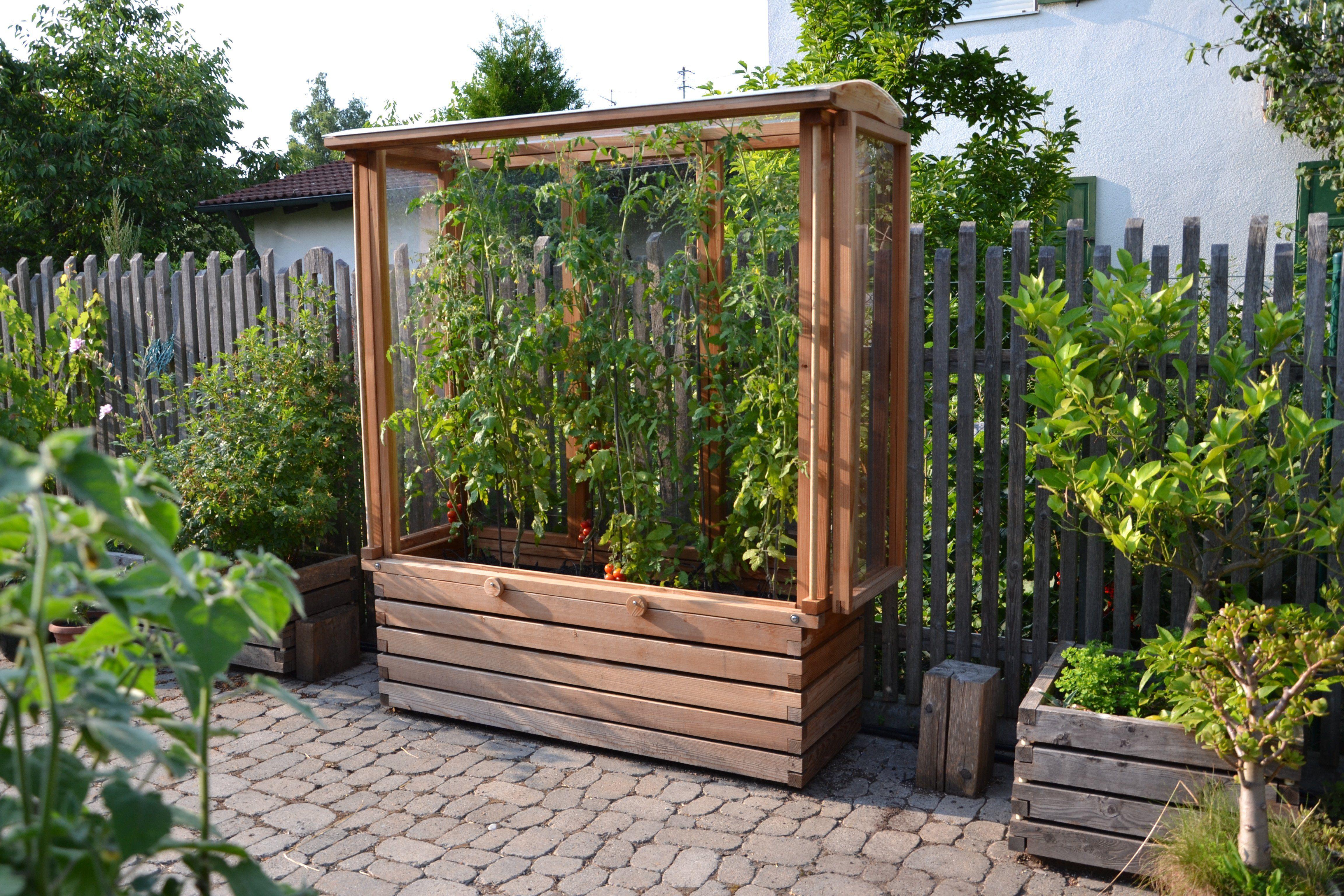 Tomatenhaus Auf Pflanzkasten Fur Balkon Und Terrasse 150cm Lange Tomaten Garten Tomaten Haus Pflanzen