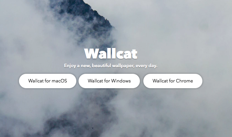 Wallcat app for macOS and Windows- Enjoy a new, beautiful wallpaper, every day.