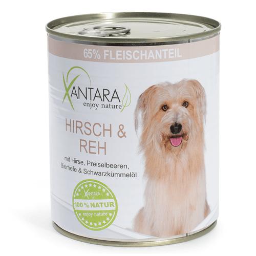 Eine Gesunde Mahlzeit Fur Einen Hund Selbst Zusammenstellen Vitamine Fur Hunde Hundefutter Hunde Futter