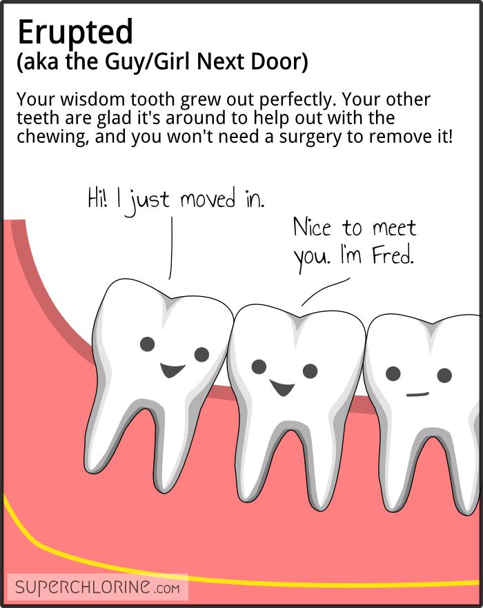Erupted (aka the Guy/Girl Next Door). Your wisdom tooth