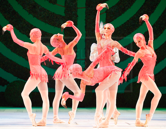 Flamingos In The Royal Ballet S Alice Adventures Wonderland By Christopher Wheeldon Photo Elliott