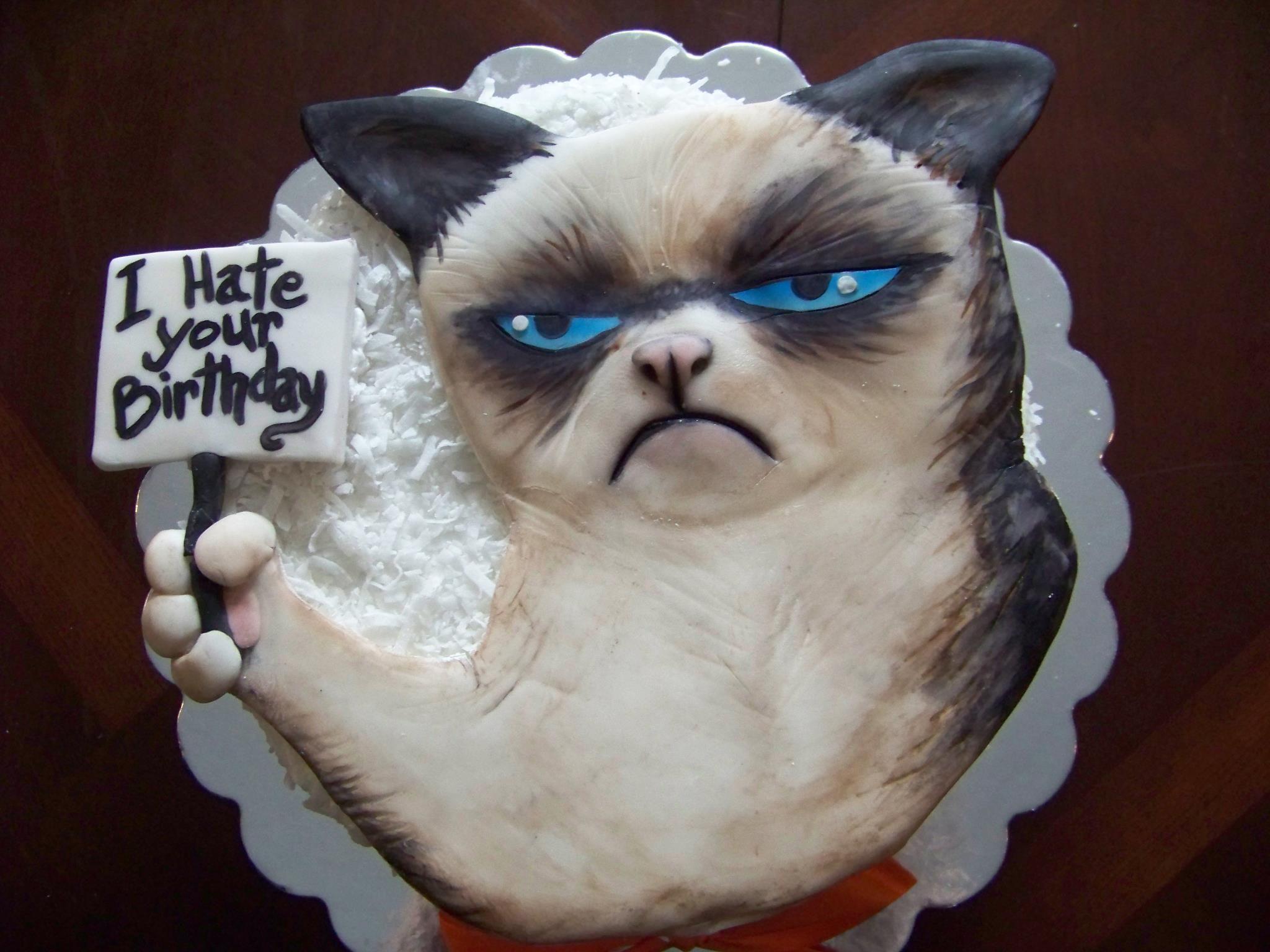 Grumpy cat cake grumpy cat birthday grumpy cat cakes