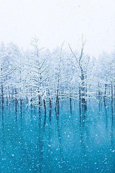 池 壁紙 青い