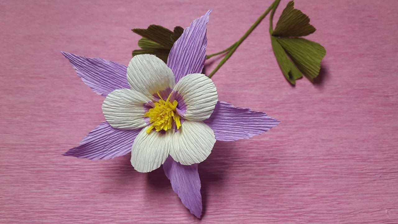 How To Make Aquilegia Paper Flowers Flower Making Of Crepe Paper