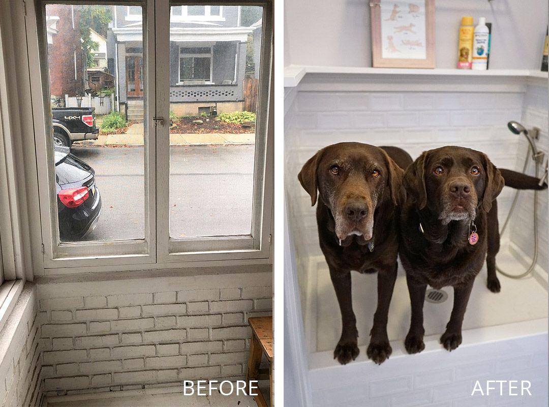 Built In Dog Wash Renovation Reveal