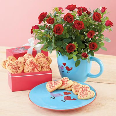 Lovebird and Mini Roses Gift -  However you celebrate Valentine's Day morning, add this sweet gift to the occasion. With cookies, adorable matching lovebird mug and saucer and some pretty red mini roses, February 14 will be picture perfect.
