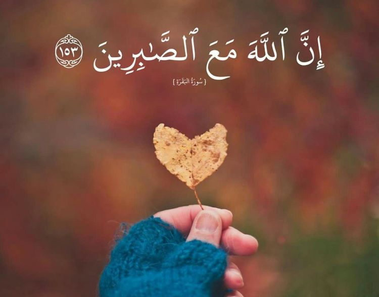 Pin By Asfarahshaikh On قوموا يا امة نبينا بالأقصى وص ى النبي القدس توحدنا Dp For Whatsapp Love Wallpaper Love Images Best for ramadan, perfect for girls & boys. dp for whatsapp