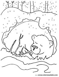 Image result for bear hibernation cooking activities for