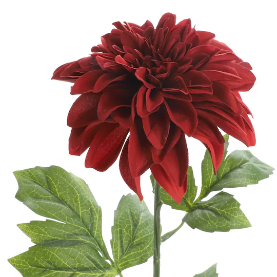 Burgundy Dahlia Stem By Ashland In 2020 Burgundy Dahlia Dahlia Floral Arrangements