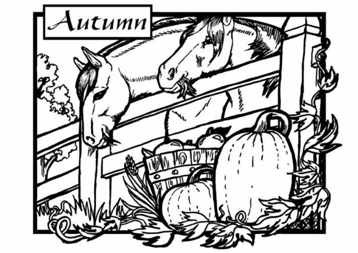 Fall Coloring Pages for All Ages | Autumn trees, Halloween coloring ...