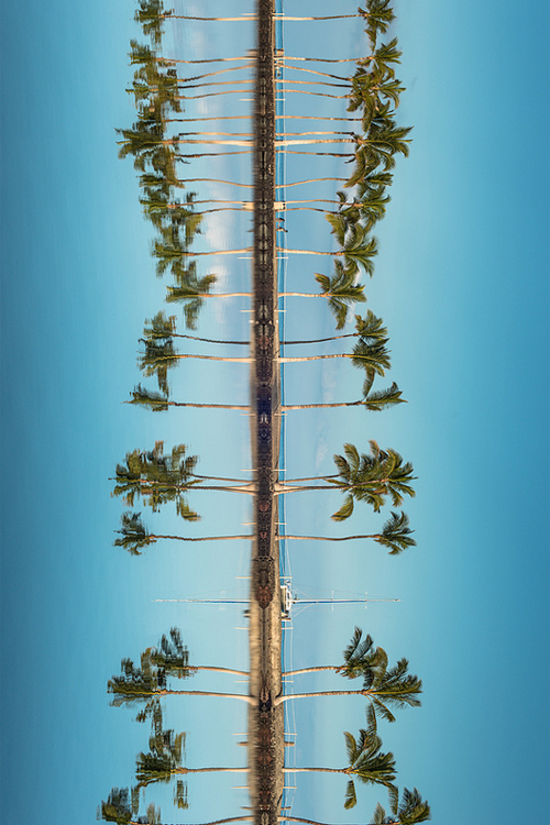palm trees tumblr vertical. See The Massive Metropolis Of Tokyo In A New Way\u2013Really Tiny | Kultúra Tokio Japonsko Palm Trees Tumblr Vertical