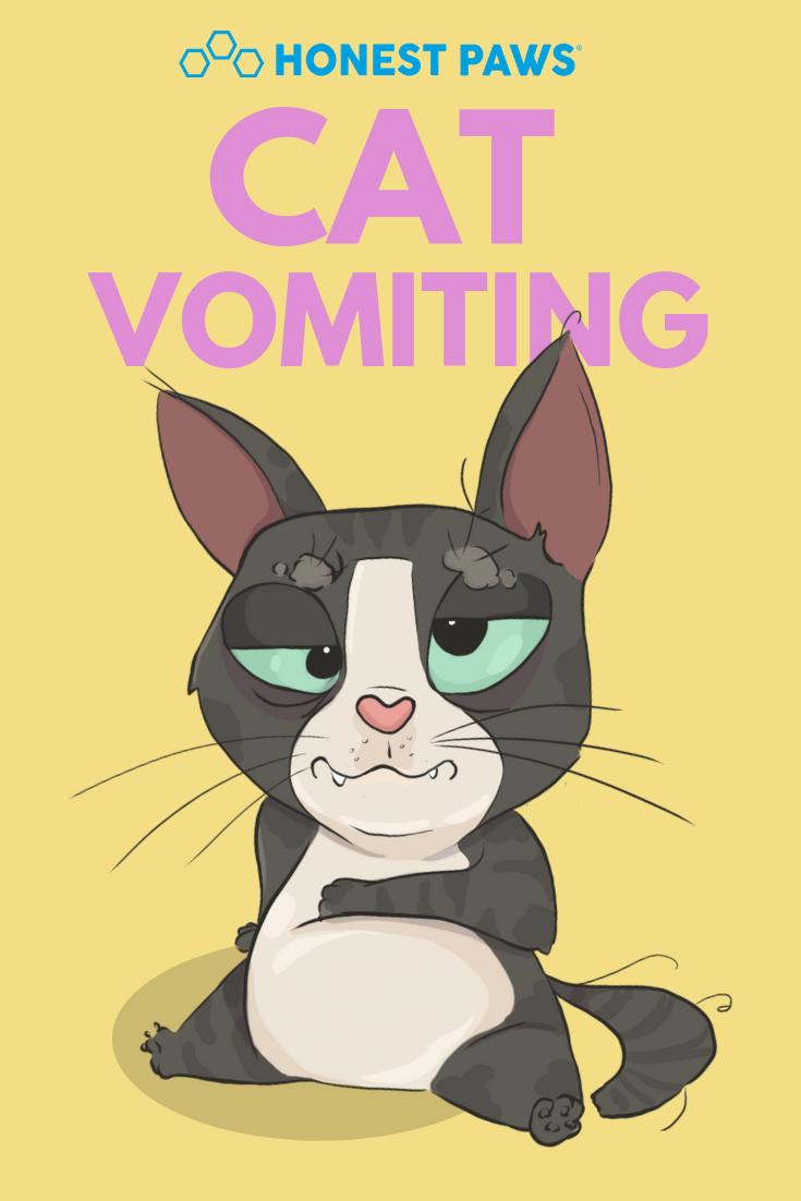 Cat Vomiting 10 Quick Tips Honest Paws Pet Blog Cat Language Pet Care