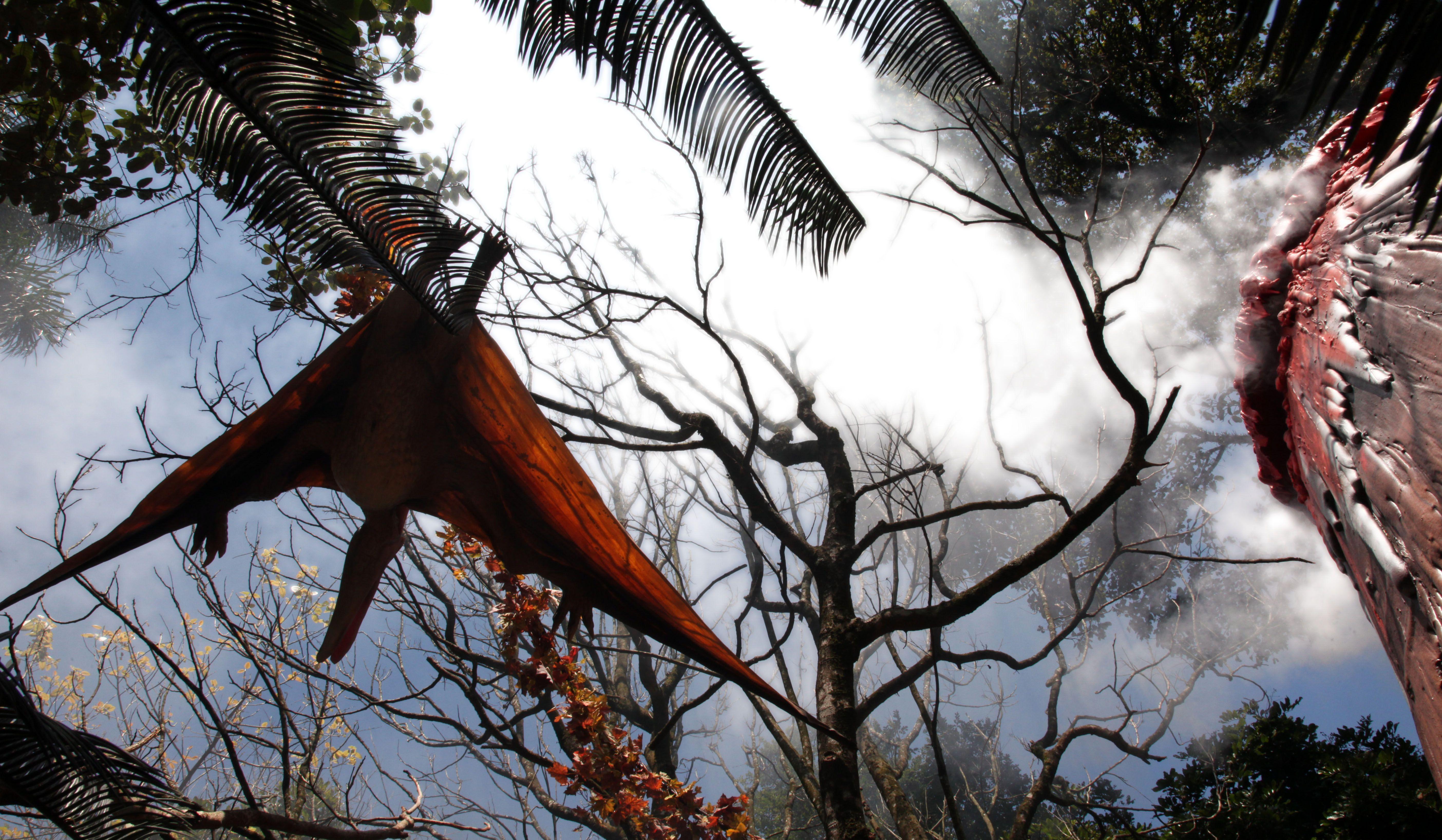 """.: Exposição """"O Mundo dos Dinossauros"""" torna visitantes em exploradores / Fotos: Fernando Battistetti"""