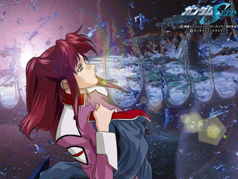 Mobile Suit Gundam SEED's Flay Allster: The girl who didn't belong