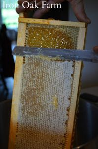 how to get honey without an extractor