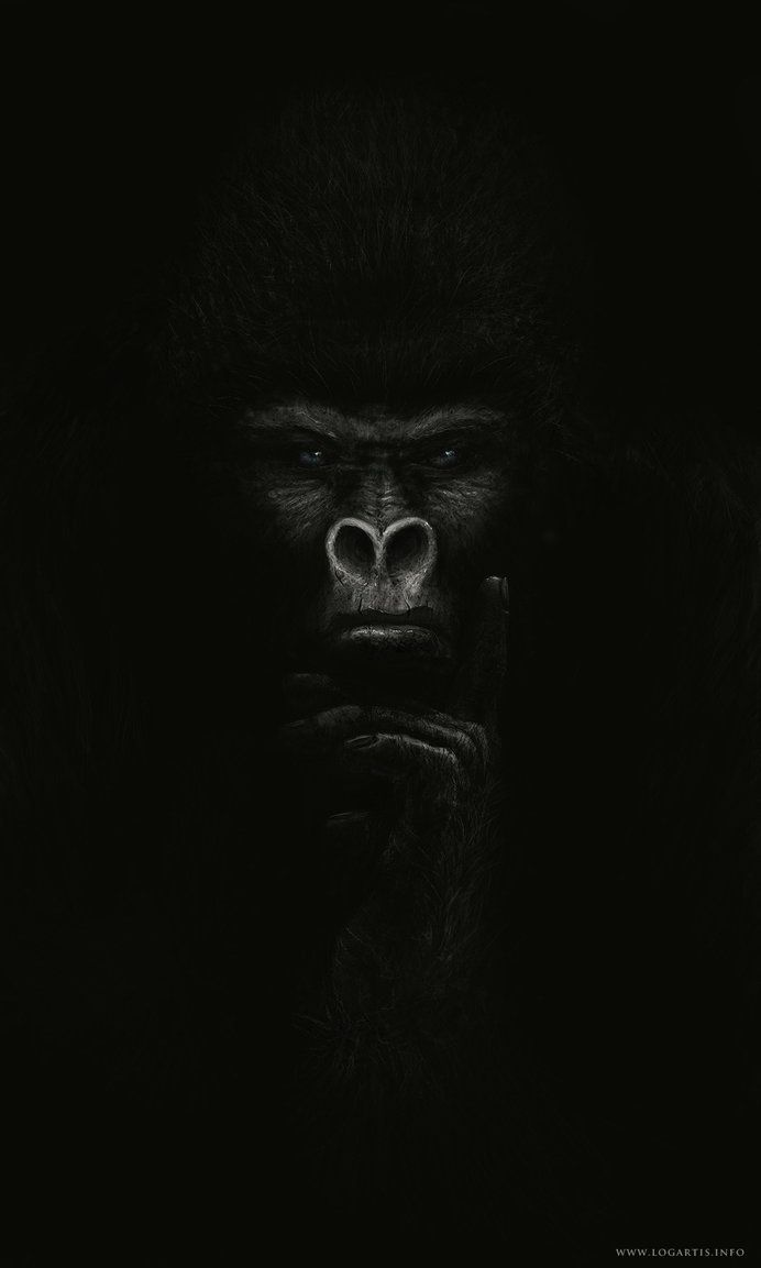 Full View Please Ps And Tablet 40h Workflow Link My Other Paintings Gorilla Gorilla Tattoo Gorillas Art Gorilla Wallpaper