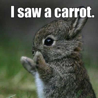 funny march pictures, love quotes, funny quotes, funny