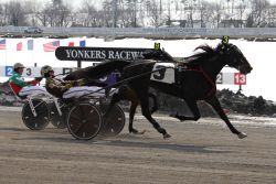 Buter wins four races at Yonkers on Sunday - Harness Racing Newsroom - USTA - USTROTTING