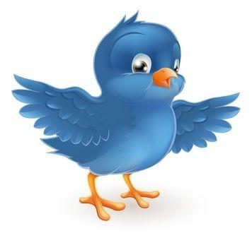New Instant Twitter Followers