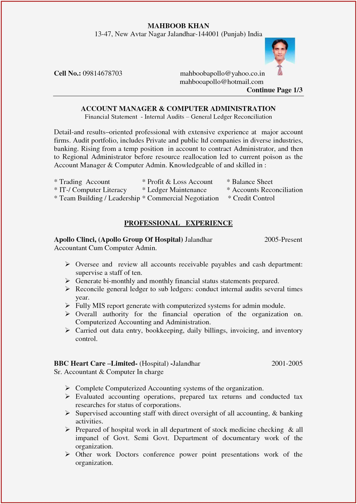 Junior Accountant Resume Sample Luxury Professional Cv For Accountant Pdf Resume Resume Sample Resume Format In Word Accounting Jobs Accountant Resume