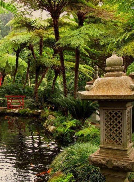 Japanese garden jard n secreto for Estanques japoneses jardin