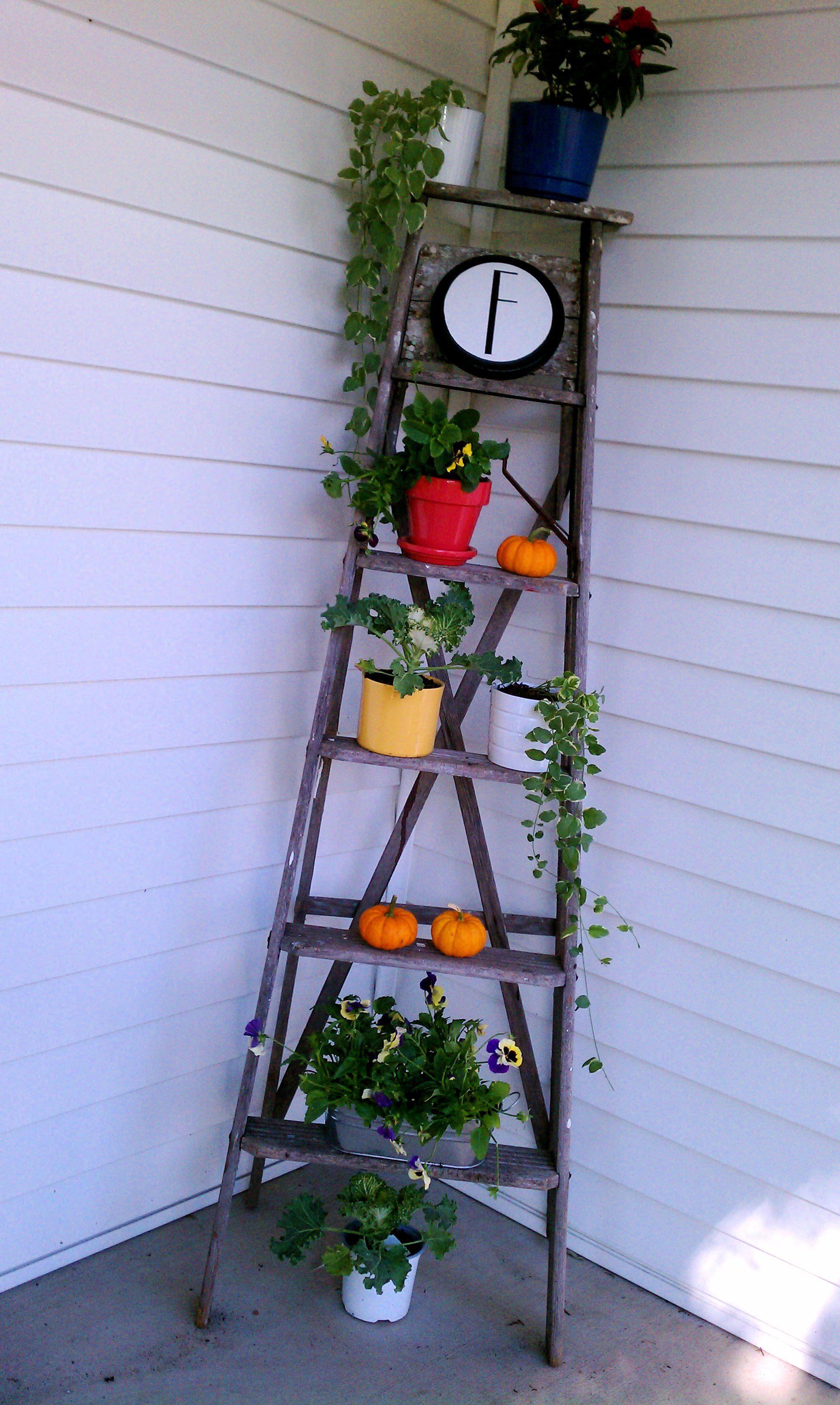 Best Old Ladder Outdoor Display Wooden Ladder Ladder 400 x 300