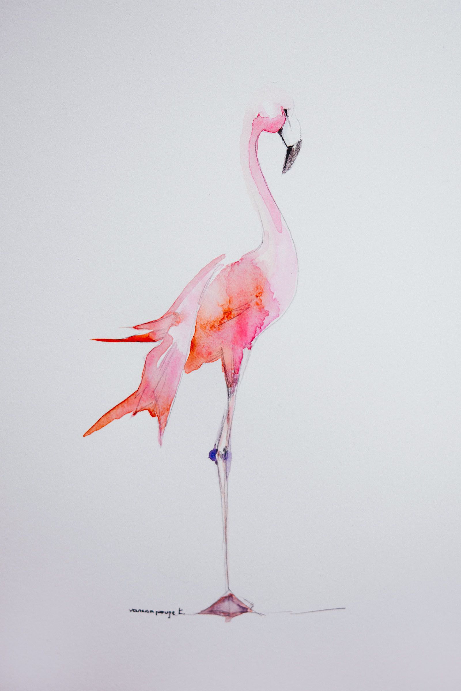 Flamingo Party Illustration Aquarelle Flamant Rose Pret A