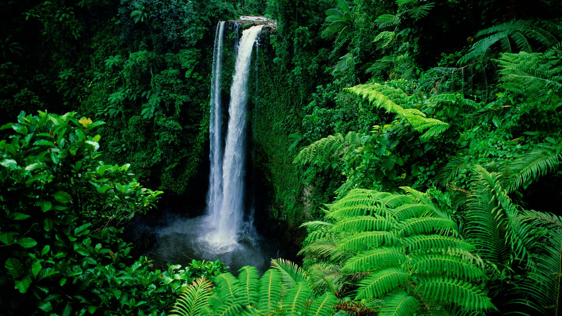 Sea Ocean: Samoa Island Upolu Cave Best Desktop Nature Wallpaper ...